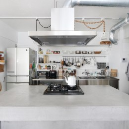 モールテックスの家 (キッチン)