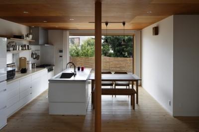 ダイニングキッチン (神社の緑を借景としたスキップフロアの家)