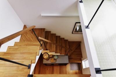 階段 (光を感じて暮らす)
