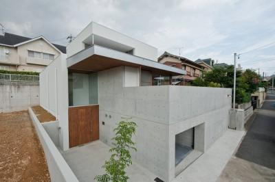 西側外観 (名古屋市T邸~混構造のガレージハウス)