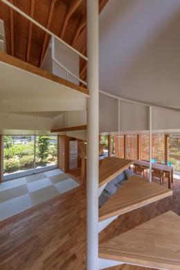 小田井の住宅 (螺旋階段から1,2階を見る)