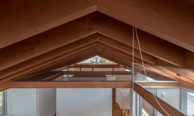 小田井の住宅 (連続する垂木)