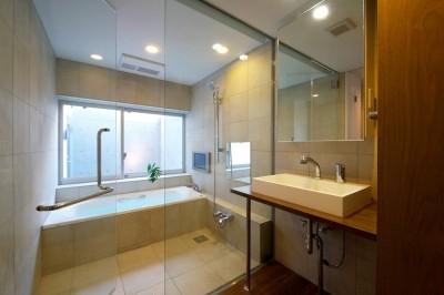 ドライエリアに面したバスルームとパウダールーム (名古屋市T邸~幾つもの外部空間を内包する家)