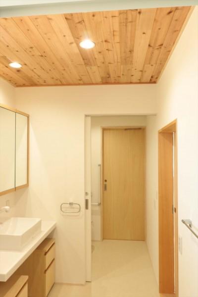 休耕地の家|洗面所/トイレ (休耕地に建つ女性のための住宅)