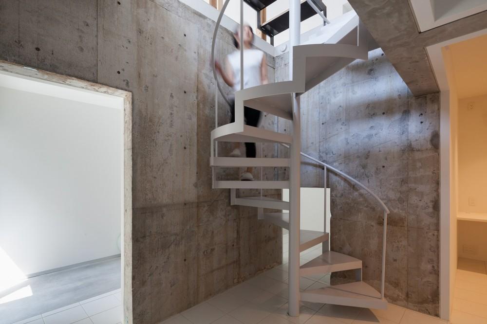 白山戸建てリノベーションPJ (内部階段)
