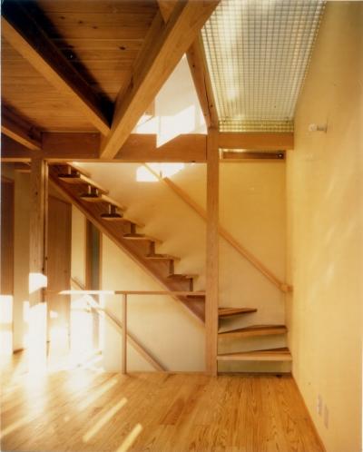RC地下駐車場の上に産直木材三層の家/Maさんの家 (リビング階段と吹き抜けにFRPグレーチングのブリッジを持つリビング・ダイニング)