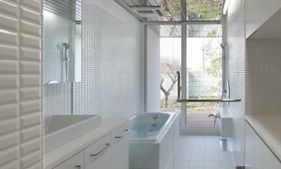 上三川町の民家 (洗面・浴室)