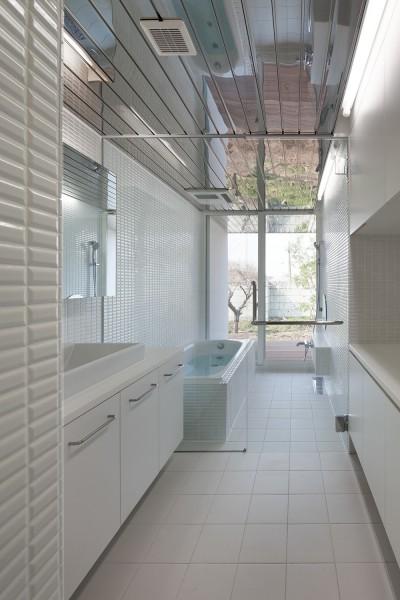 洗面・浴室 (上三川町の民家)
