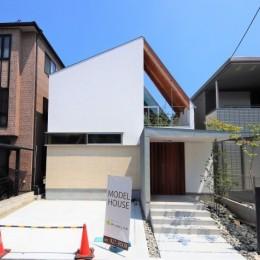 八尾の家(コンセプトハウス) (外観)