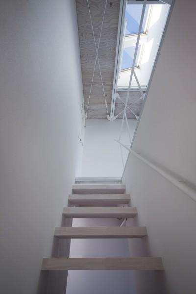 3階サンルーム (徳島の住宅)