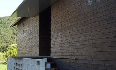 都幾川縁りのハイブリッド・ハウス/Onさんの家 (板張り外壁と玄関)