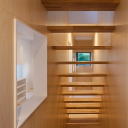 桜の住宅 (階段)
