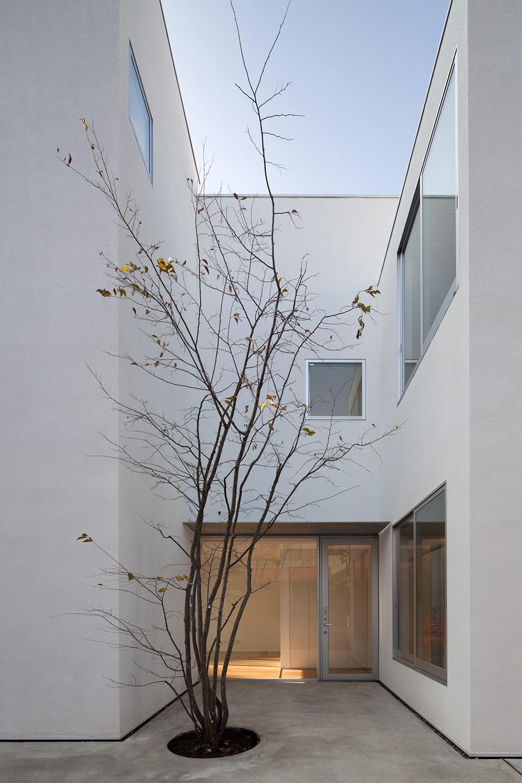 平間の2世帯住宅 (親世帯玄関アプローチ)