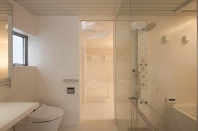 洗面,浴室,トイレ (本八幡の住宅)