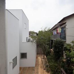 三鷹の住宅 (庭)