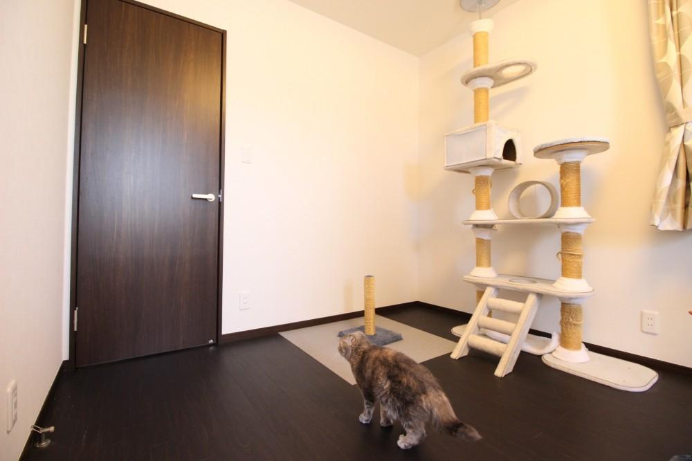 ネコと暮らす戸建リフォーム (洋室)