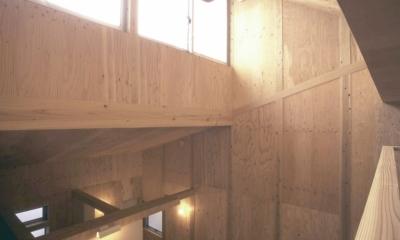 小石川植物園と向き合う家/Niさんの家 (吹抜けハイサイドライト)