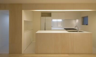 徳丸の住宅 (キッチン)