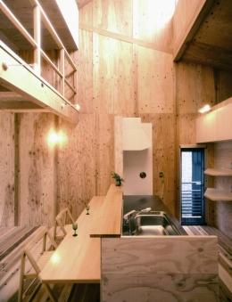小石川植物園と向き合う家/Niさんの家 (吹抜けハイサイドライトと下のキッチン)