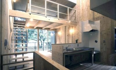 小石川植物園と向き合う家/Niさんの家 (リビング・ダイニング。キッチン。ロフト)
