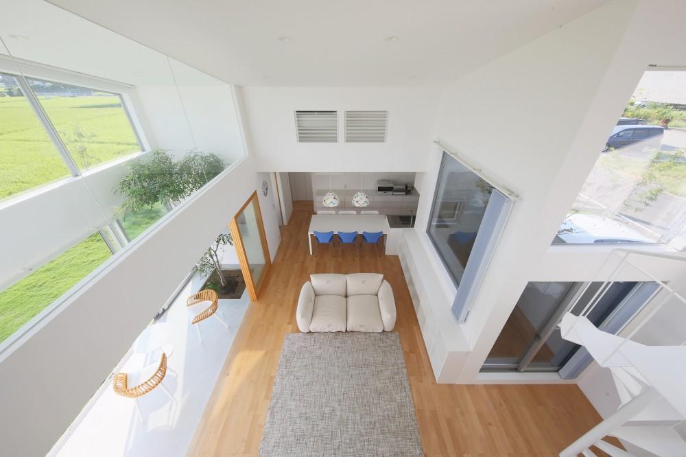 House in Kawanabe ~緑と共に暮らす家~ (LDK 05)