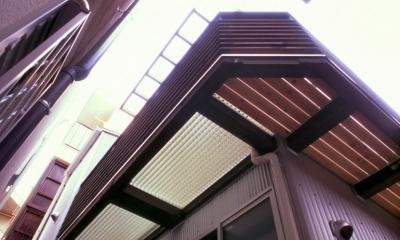 小石川植物園と向き合う家/Niさんの家 (バルコニー(2))