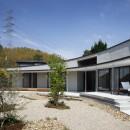 堺の家の写真 中庭