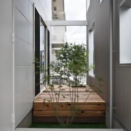 二重の壁をもつプライベートを確保した家(唐崎の家) (中庭)