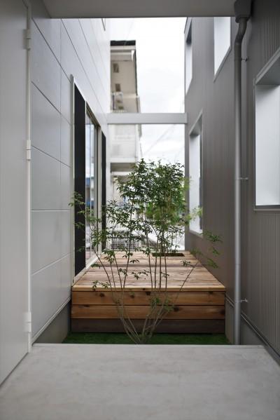 中庭 (二重の壁をもつプライベートを確保した家(唐崎の家))