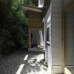 木立の中の家