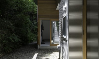 木立の中の家 (庭)