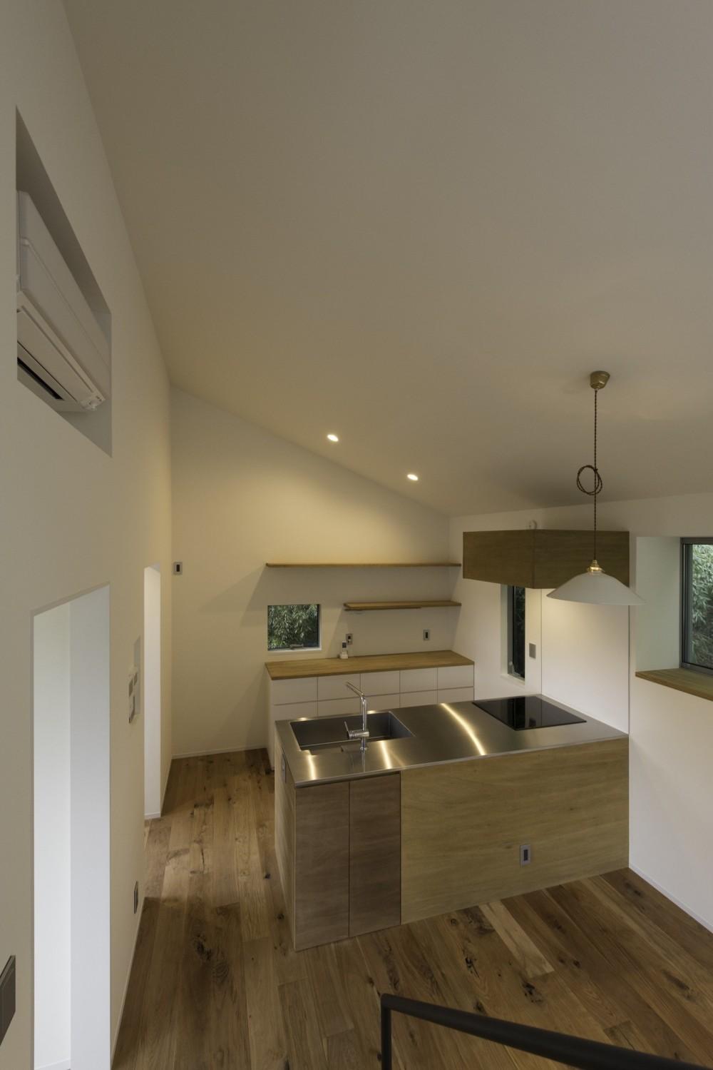 木立の中の家 (キッチン)