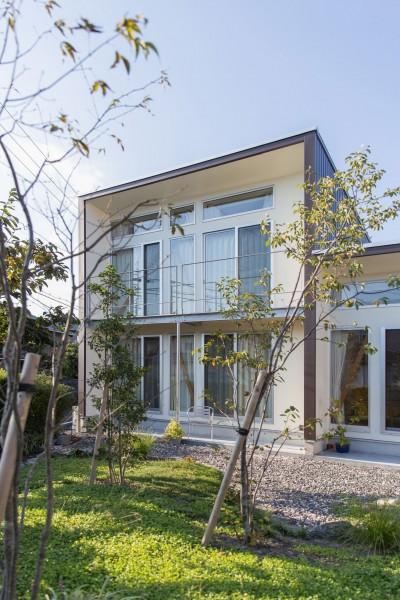 南側外観 (3-BOX 1800万円の家)