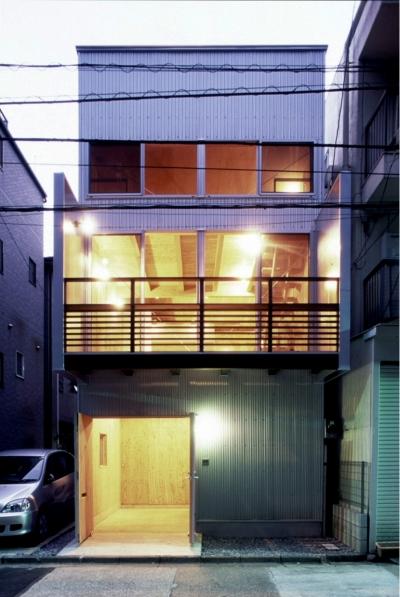 小石川植物園と向き合う家/Niさんの家 (北面、小石川植物園側外観(夜景))