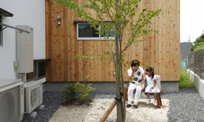 自然体で暮らす平屋~光・風・緑を取り込む家~ (北庭)