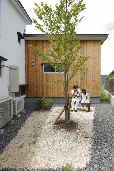 北庭 (自然体で暮らす平屋~光・風・緑を取り込む家~)