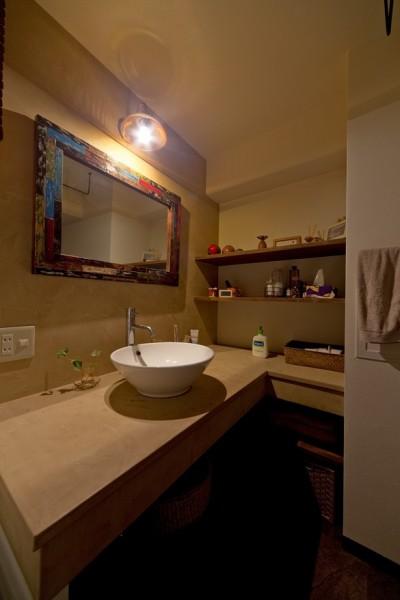 洗面室 (世界を旅する家)
