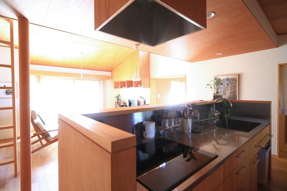 雑木林の小さな家 (キッチン)