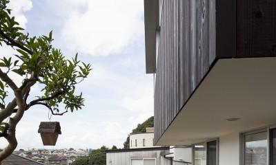 岡本の住宅 (濡れ縁)