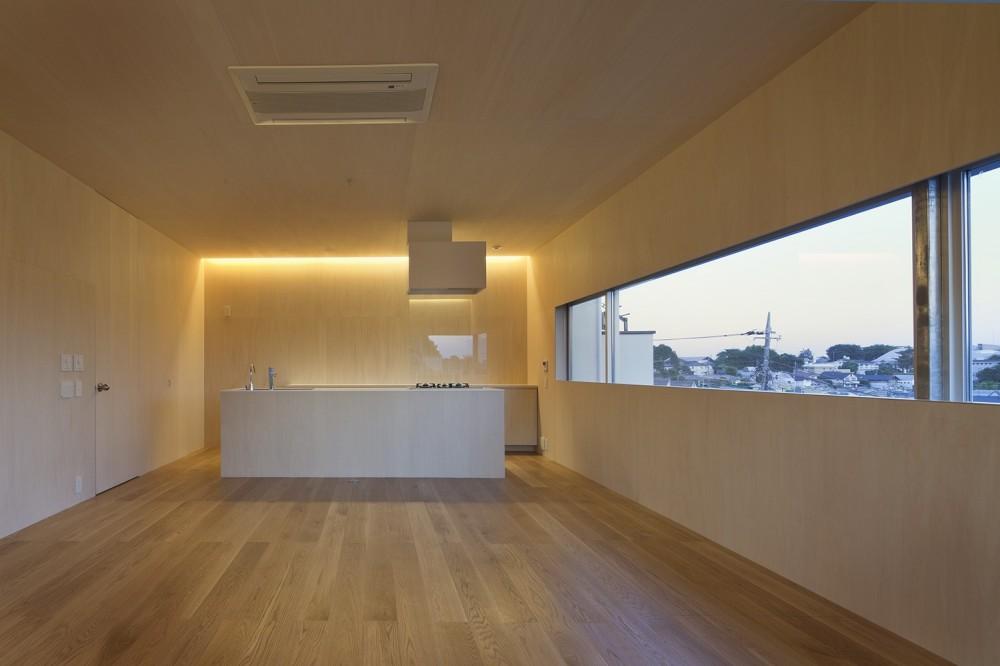岡本の住宅 (キッチン、ダイニング、リビング)