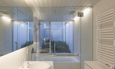 奥沢の住宅 (洗面脱衣室,浴室)