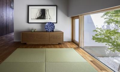浜松H邸 -庭とリビングが一体化する平屋の邸宅-
