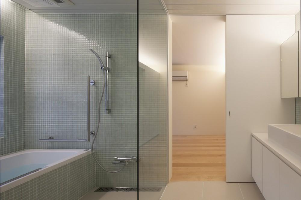 川口の住宅 (洗面脱衣室,浴室)