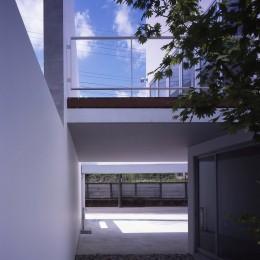 市川の住宅 (庭)