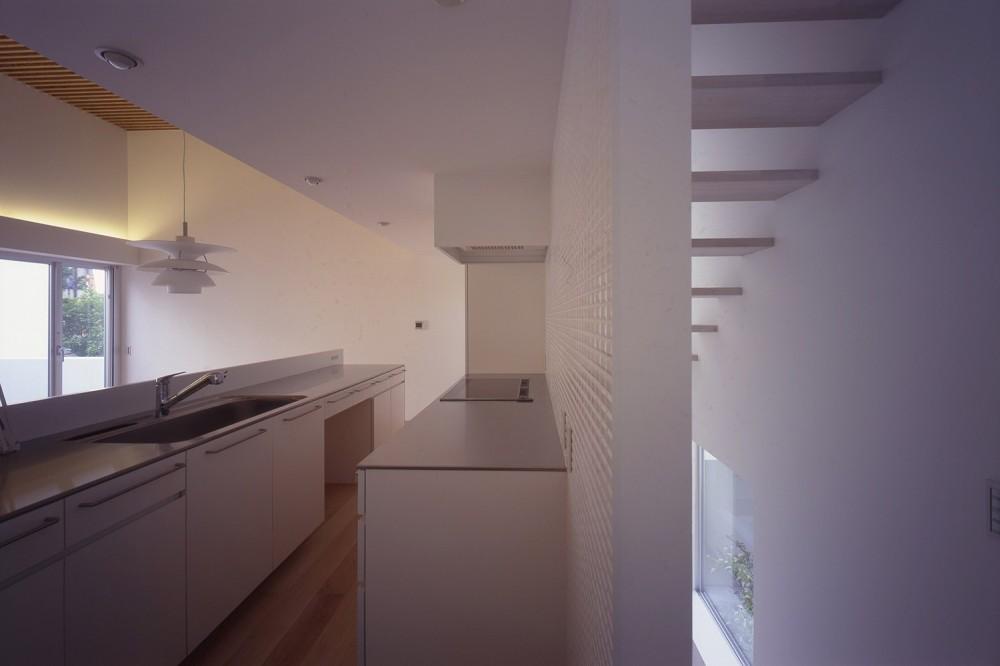 市川の住宅 (キッチン)
