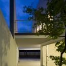 市川の住宅の写真 庭