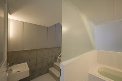 洗面脱衣室,浴室 (恵比寿の住宅)