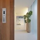 小瀬の家 平屋のコートハウスの写真 玄関