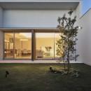 小瀬の家 平屋のコートハウスの写真 中庭とリビングを繋ぐ大きな開口