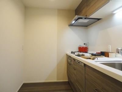 キッチン (深みのあるウォールナットの部屋)